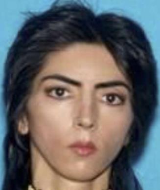Nasim Aghdam, responsabile sparatoria nella sede YouTube