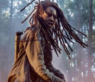 The Walking Dead 10: Michonne