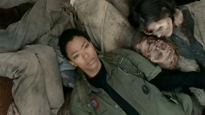 The Walking Dead: Sasha