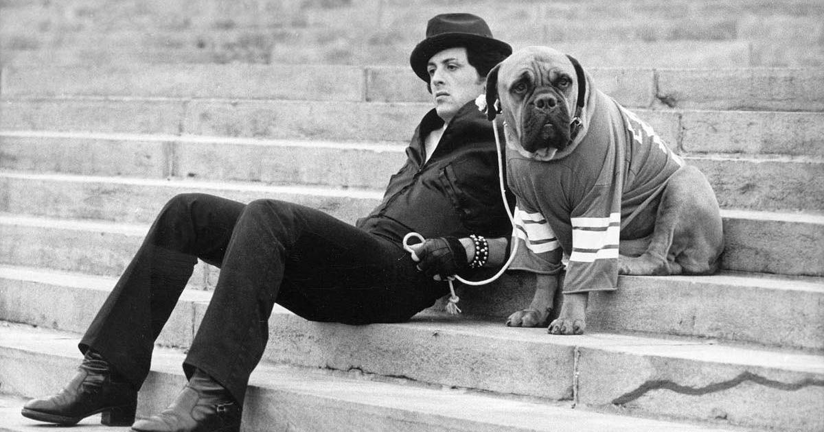 Rocky Balboa: storia, curiosità e frasi dell'intramontabile personaggio di Stallone