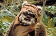 Uno degli Ewok visto nel film Star Wars: Il ritono dello Jedi