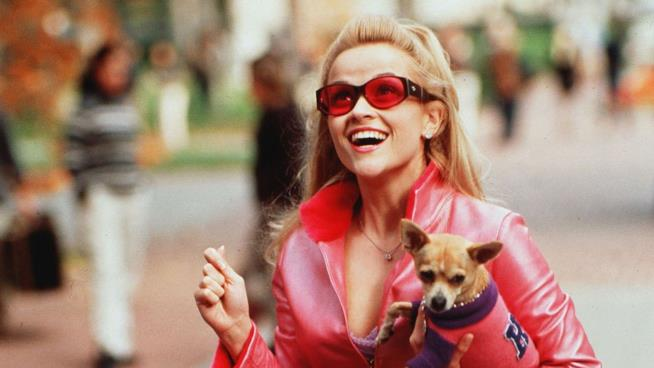 Reese Witherspoon è Elle Woods